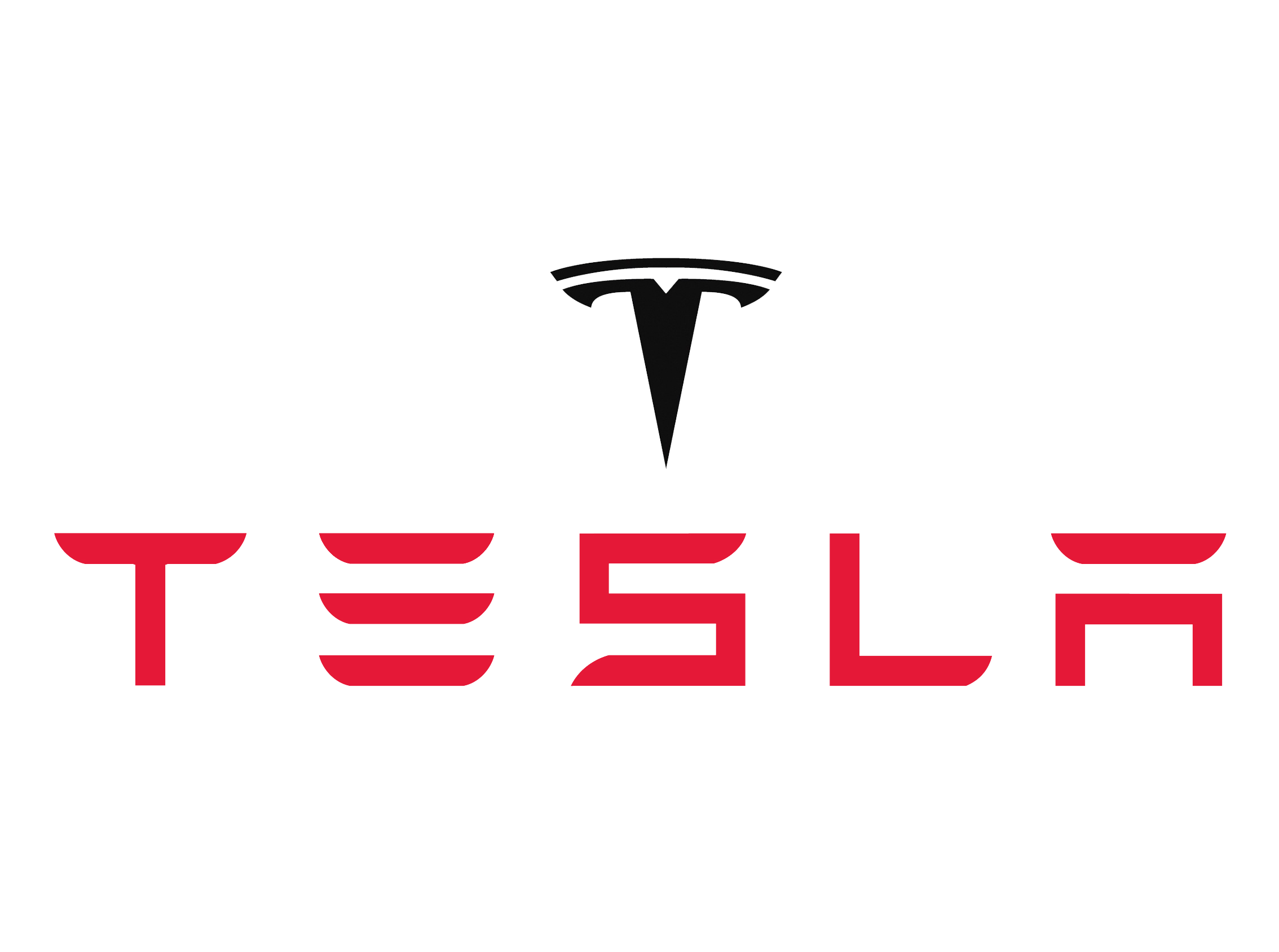 TeslaMotorssymbol Sams Thoughts - About tesla motors